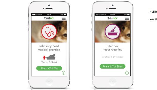 猫の健康をスマートフォンでチェック