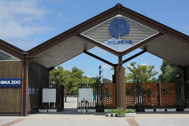 徳島県の動物園のとくしま動物園