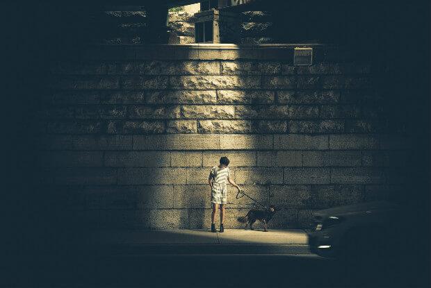 夜に犬と散歩をする女性