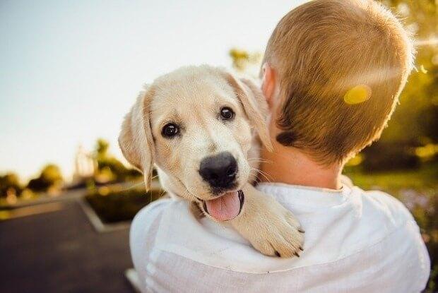 犬を抱く人