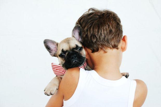 犬を抱っこっする少年